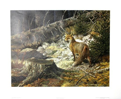 "Carl Brenders; ""On The Alert - Red Fox"""