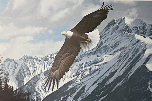 """Ron Parker; """"Wings Over Winter - Bald Eagle"""""""
