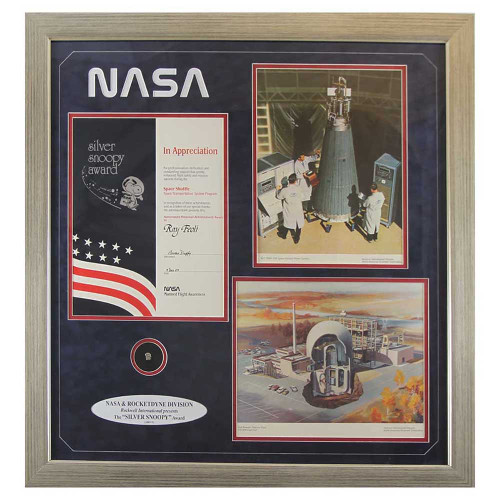 Silver Snoopy, Snoopy, NASA, space shuttle, space program, space flight, aviation