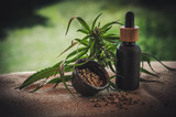 The Power of using CBD MCT Oil