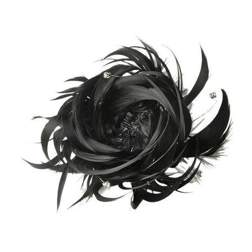 "Black Feathers - ""Feathered Nest"""