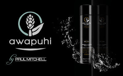 Paul Mitchell Awapuhi Wild Ginger Smooth