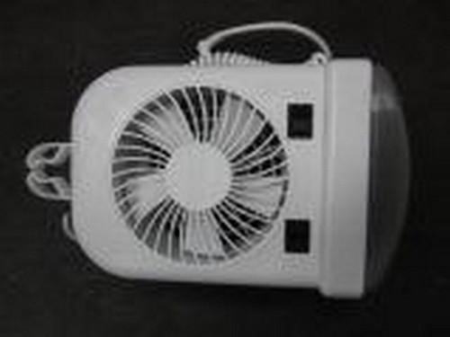 Fan/Light Combo