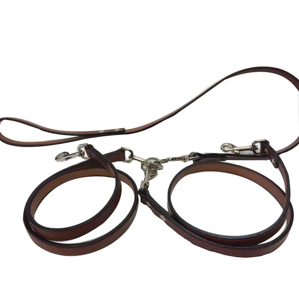 2 dog leash