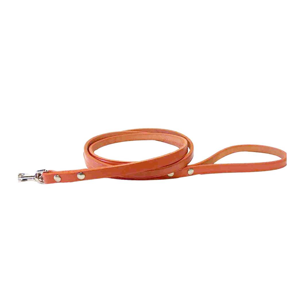 Orange Leather Leash