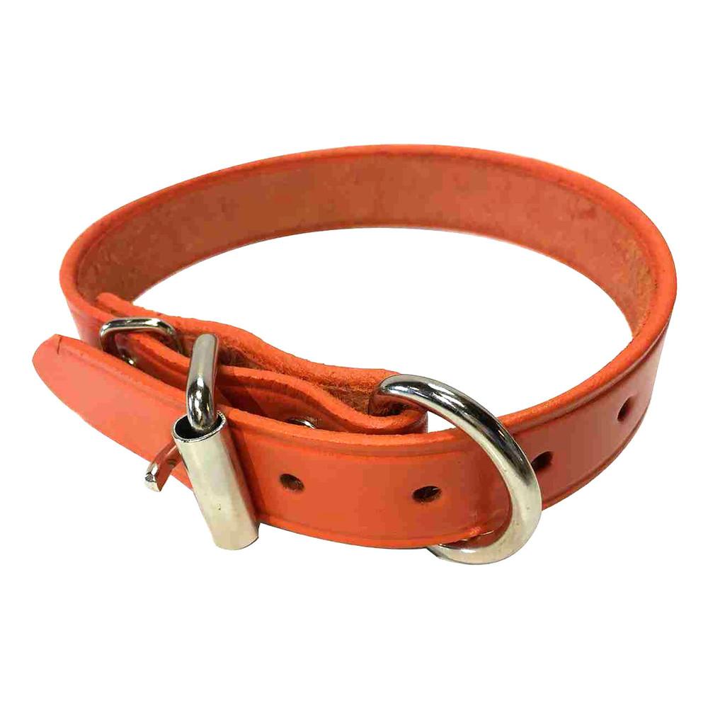 orange leather collar