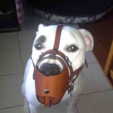 moka leather muzzle
