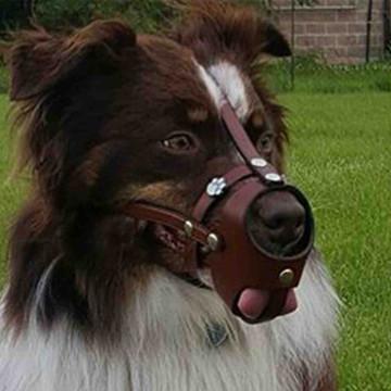 Mocha leather muzzle