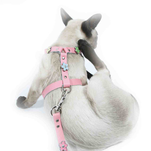 Cat Leather Harness