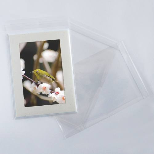 5x7 Clear Bags for Cards [B75] - 100 Pack