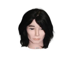 Adam Male Mannequin Head