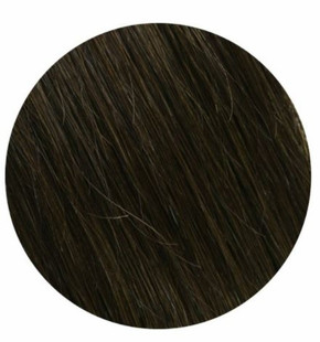 """Salon Professional Clip In Hair Extensions #2 20"""""""