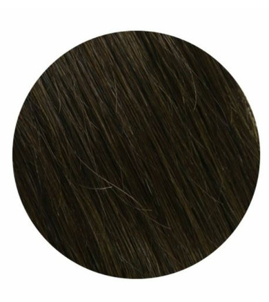 """Salon Professional 20 Piece Tape In Hair Extensions #2 20"""""""