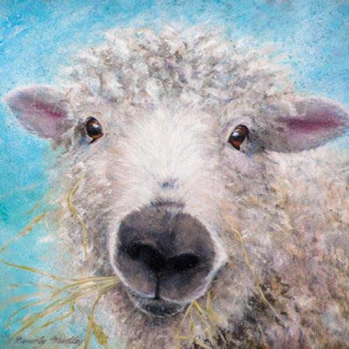 BM76408 - Greyface Dartmoor Ewe (1 blank card)~