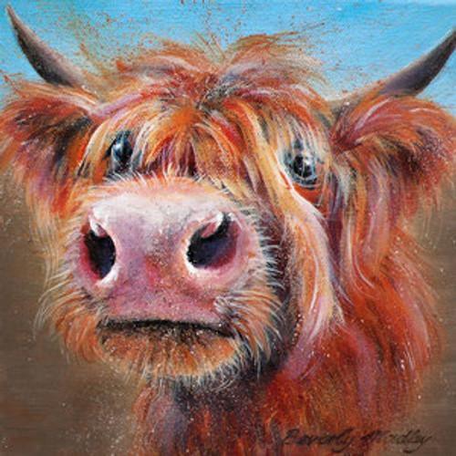BM76721 - Highland Cow (1 blank card)~