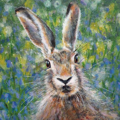 BM76722 - Hare (1 blank card)-