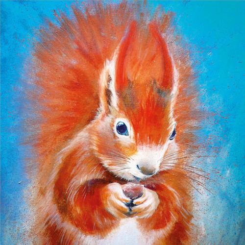BM76817 - Red Squirrel (1 blank card)~