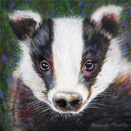 BM76821 - Badger (1 blank card)~