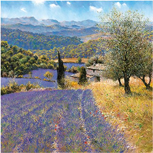 DO66148 - La Provence (1 blank card)~