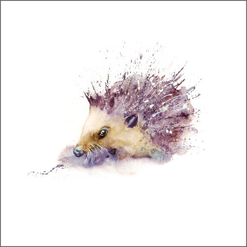 RT84704 - Hedgehog (1 blank card)