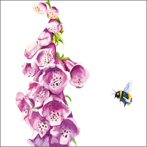 RT84715 - Bee and Foxglove (1 blank card)~