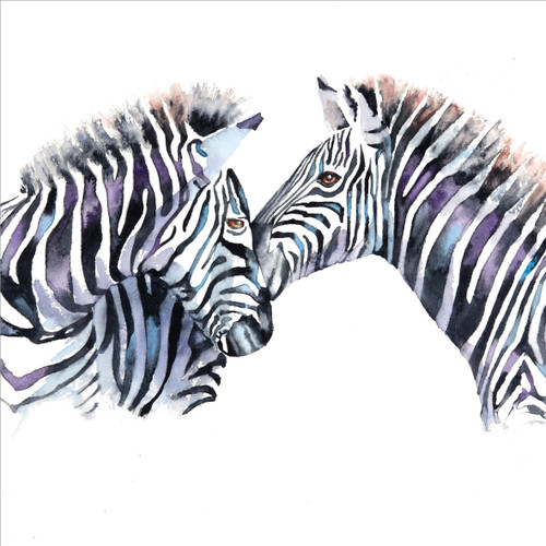 RT84842 - Zebras (1 blank card)