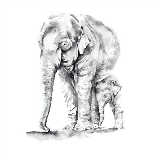 RT84850 - Elephants (1 blank card)~