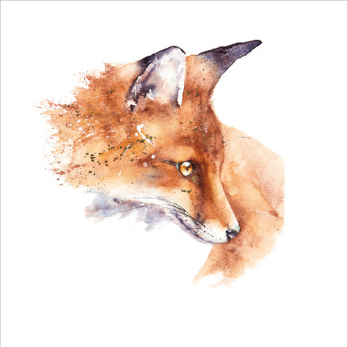 RT84851 - Mr Fox (1 blank card)~