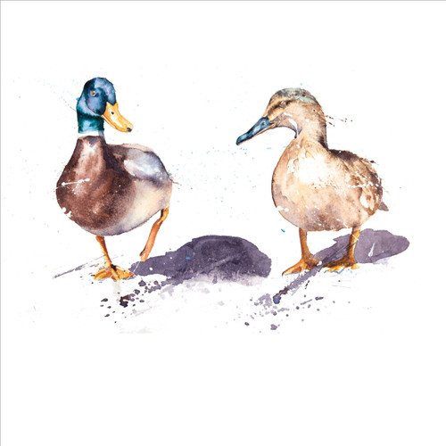 RT84852 - Mr & Mrs Duck (1 blank card)~