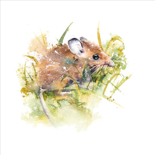 RT84853 - Field Mouse (1 blank card)~