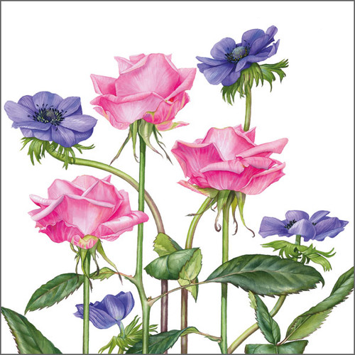 BS77766G - Roses and Anemones (1 get well card)~