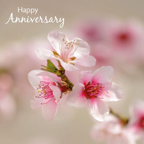SM14111A - Peach Blossom (1 anniversary card)~