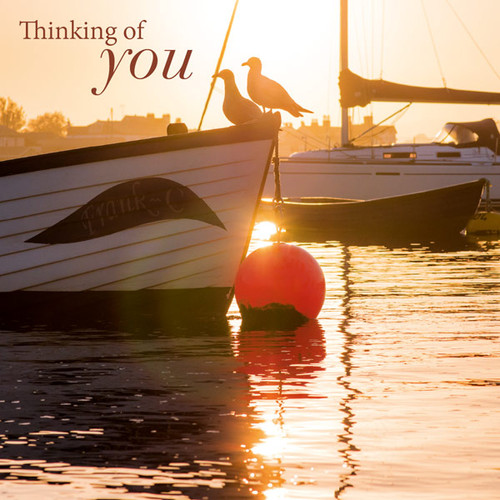 SM14108Y - Sundown and Seagulls (1 thinking of you card)-