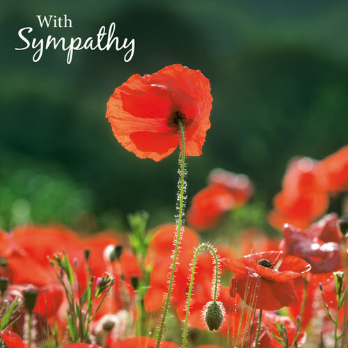 SM14106S - Poppies (1 sympathy card)~