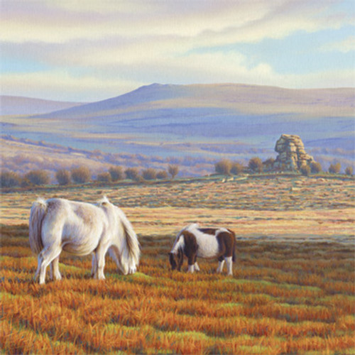 BH80497 - Ponies at Vixen Tor (1 blank card)~