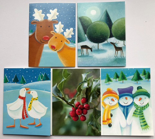 CC90MIXCH - Mixed Charity Christmas minicard pack (1 pack of 12, designs may vary)