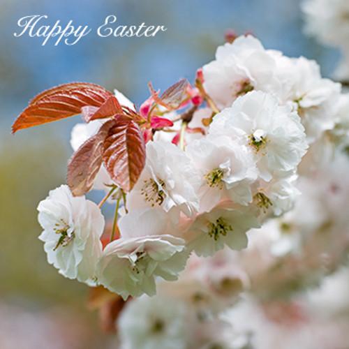 SM10029E - Springtime Blossom (Easter notelet packs of 5 cards)