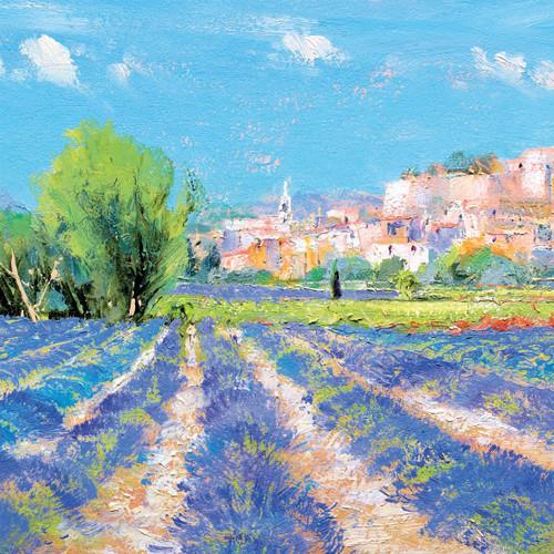 DO66921 - Lavender near Valreas (1 blank card)-