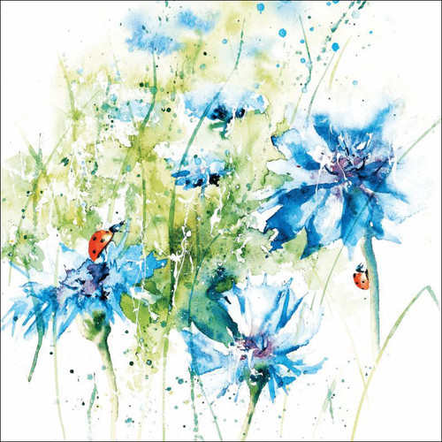 RT84913 - Cornflowers (1 blank card)