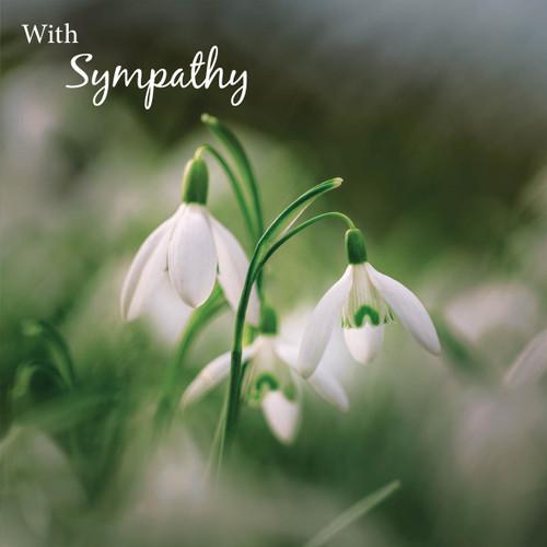 SM14185S - Snowdrops (1 sympathy card)