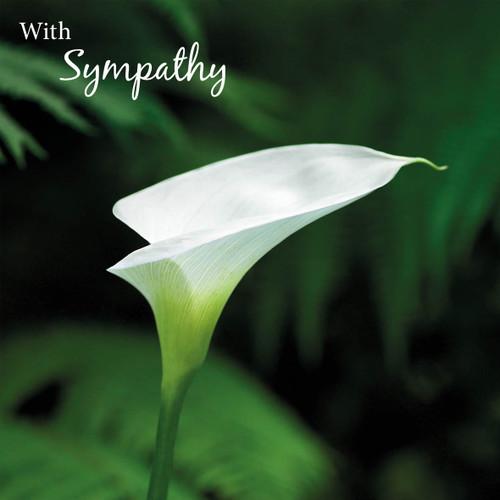 SM14186S - Peace Lily (1 sympathy card)-