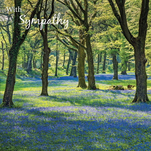 SM14187S - Bluebell Wood (1 sympathy card)~