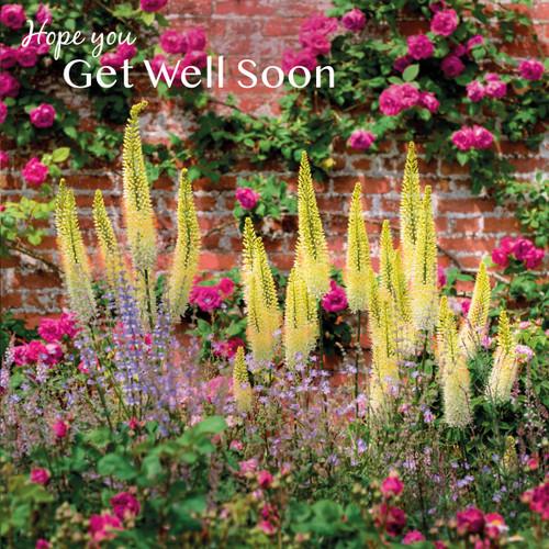 SM14192G - Flower Garden (1 get well card)