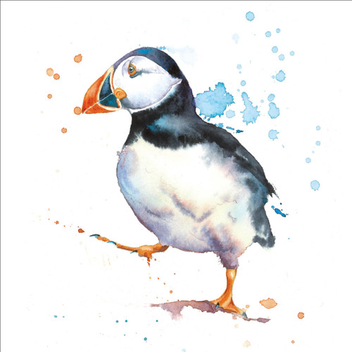 RT84949 - Puffin (1 blank card)