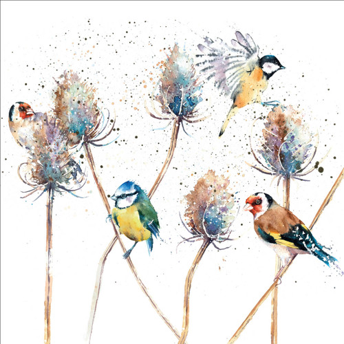 RT84952 - Birds and Teasels (1 blank card)