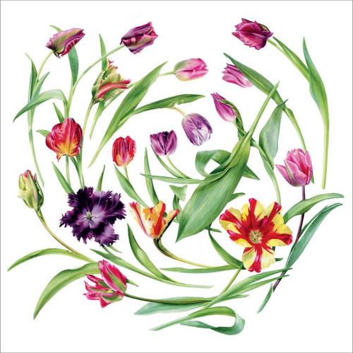 BS77017 - Floral Swirl (1 blank card)