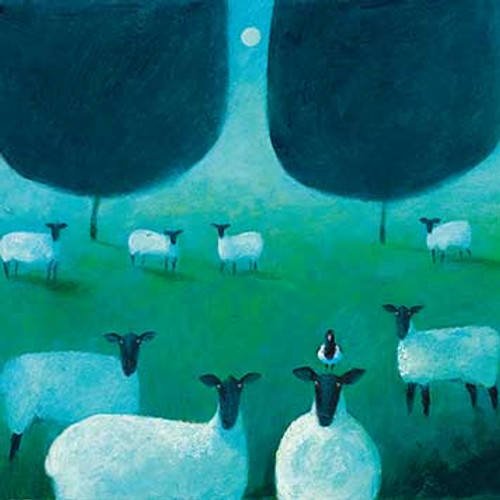 GP64232 - What are ewes looking at? (1 blank card)~