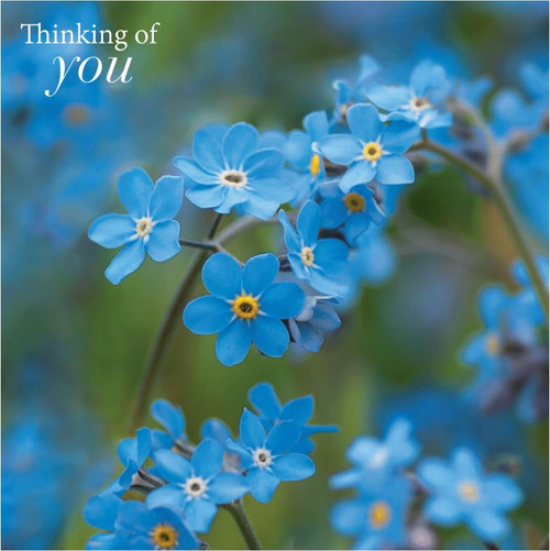 SM14220Y - Forget-me-nots (1 thinking of you card)