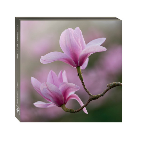 WAL11125 - The Wonder of Spring (1 wallet of 8 cards)