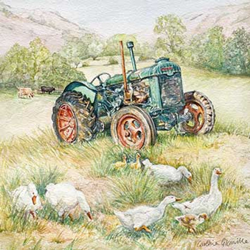 M34003 - Tractor in the Meadow (1 blank card)~